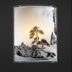 Светильник настенно-потолочный 2504-11