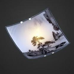 Светильник настенно-потолочный 2504-21