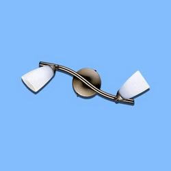 Настенно-потолочный спот CL501521
