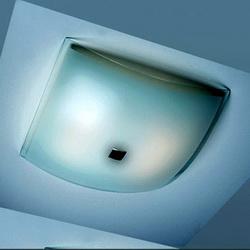 Светильник настенно-потолочный CL931021